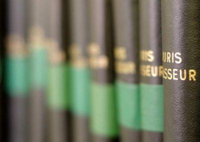 A propos de l'Avis de la Cour de cassation du 6 juillet 1998 relatif à la stérilisation des handicapés mentaux